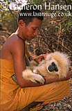 Buddist Monk and Lar Gibbon or White-handed Gibbon (Hylobates lar), Wat Pa Luang Ta Bua Yannasampanno, Kanchanaburi, Thailand