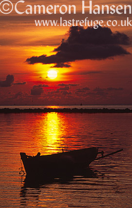 Fishing boat at sunset, Kho Phi Phi, Andaman Sea, Thailand