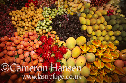 Artificial Tropical Fruits, Bangkok, Thailand