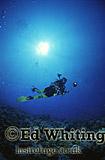 Diver, Southern Red Sea, Sudan