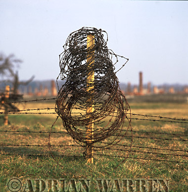 Auschwitz Nazi Death Camp: Auschwitz II - Birkenau : Remains of a barbed wire fence with the ruins of accommodation blocks in the background.