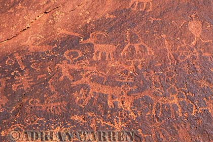 ROCK ART - Petroglyphs, Sand Island Recreation Area, San Juan River, Utah, USA