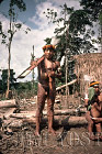 Waorani Indians: In full regalia for a fiesta, a visitor brings a brand new blowgun for a relative, Gabado, 1974, Ecuador