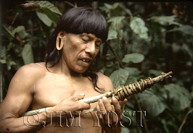Waorani Indians: Making a hook for harvesting fruit from high in the trees, Gabado, 1974, Ecuador
