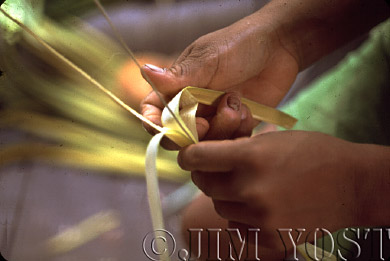 Waorani Indians: Stripping chambira leaves to make twine is a never-ending, daily task, Tewaeno, 1974, Ecuador