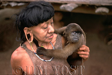 Waorani Indians: Waorani often become quite attached to their pets, like this wooley monkey, Tewaeno, 1975, Ecuador