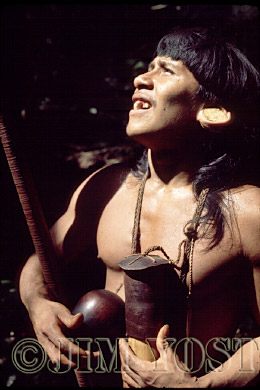 Waorani Indians: With quiver of darts and kapok carrier, a hunter concentrates on monkeys in the canopy, Gabado, 1974, Ecuador