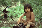 Waorani Indians: A young boy with his pet couvier's toucan