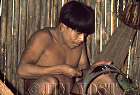 Waorani Indians: Spreading poison curare onto darts, using a piece of an old pot that has cooked meat, Tewaeno, 1974, Ecuador