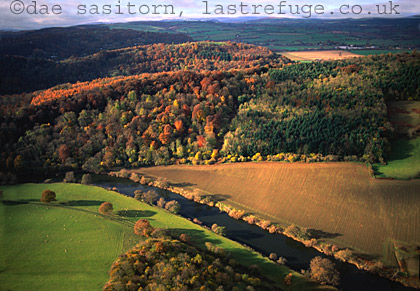 Forest of Dean and River Severn in Autumn, Gloucestershire, England