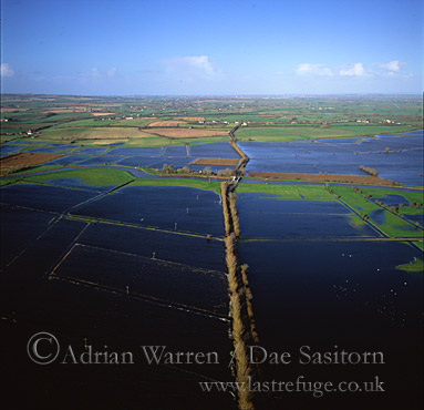 Flooded River Tone, Sedgemoor,Somerset Levels near Taunton, England