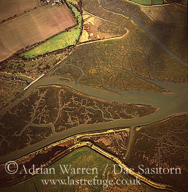 Mud Flats near Thorney Island, West Sussex, England