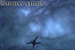Adrian Warren skydiving