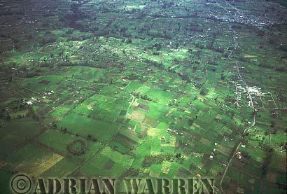 Aerials (aerial photo) of South America: ANDEAN ALTIPLANO, High Altitude Agriculture, Ecuador, 1993