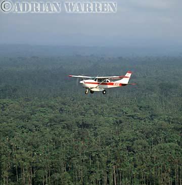 AERIALS: Cessna 206 over forest in Ecuador
