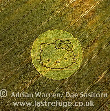 Crop Circle, Wiltshire, England