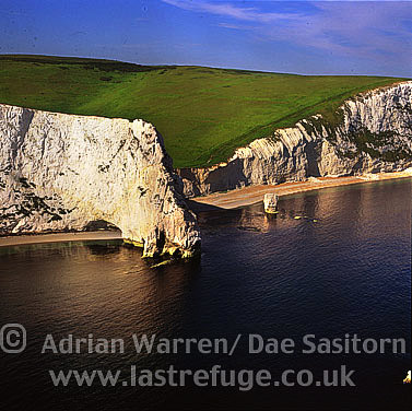 Dorset coast just west of Durdle Door, Dorset, England
