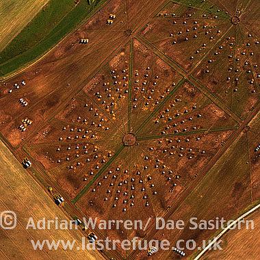 Pig Farm, Wiltshire, England