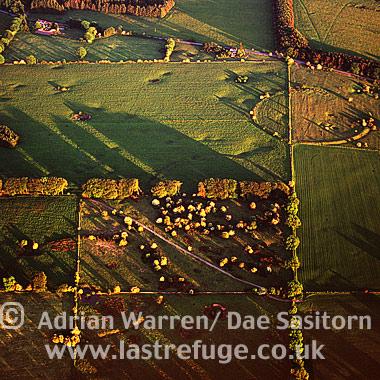 Priddy Circles, Somerset, England