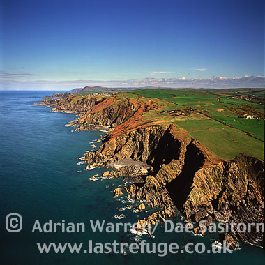 Shag Point, Lee Bay, just West of Ilfracombe, Devon, England