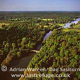 Sherwood Forest and River Poulter, between Carburton and Clumber Park, Nottinghamshire, England
