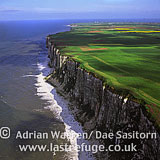 North Yorkshire cliffs near Flamborough Head, Yorkshire, England