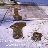 Normanton Down Barrows: in snow, Wiltshire, England