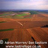 Harvest, Wiltshire, England