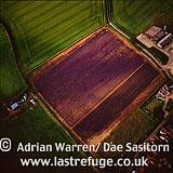 Lavender Fields, Norfolk, England