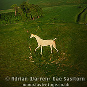 Oldbury White Horse (Cherhill White Horse), Wiltshire, England