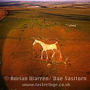 Alton Barnes White Horse, Alton barnes, Wiltshire, England