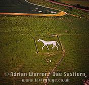Pewsey White Horse (New), Pewsey, Wiltshire, England