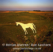 Westbury White Horse and Bratton Camp Hill Fort, Westbury, Wiltshire, England