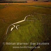 White Horse: Uffington White Horse, Oxfordshire, England