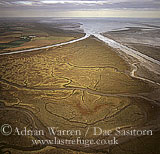 Frampton Marsh, The Wash, Norfolk, England