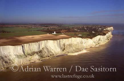 Dover White Cliffs, Kent, England