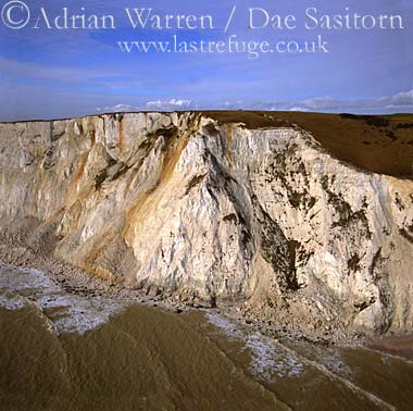White Cliffs at Beachy Head, East Sussex, England