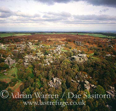 Brimham Rocks, Near Pateley Bridge, Yorkshire Dales, North Yorkshire, England