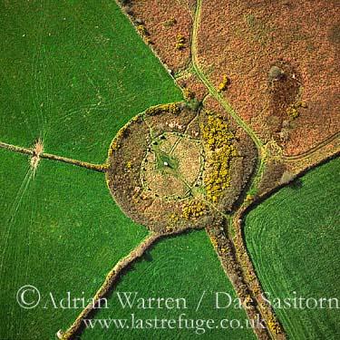 Boscawen-un Stone Circle (with gorse flowers), St Buryan, Cornwall, England