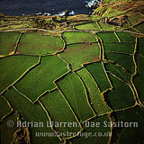 Celtic fields near Cape Cornwall. Stone Field boundaries (walls) are of surface granite, Kenidjack, Cornwall, England