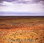 Aerials (aerial image) of Africa : Etosha National Park, Namibia