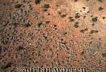 Aerials (aerial image) of Africa : African Elephants (Loxodonta africana) from air, Etosha National Park, Namibia