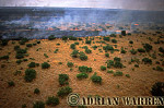 Aerials (aerial image) of Africa : Bush Fire, Etosha National Park, Namibia
