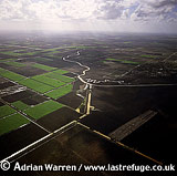 Aerials (Aerial Image) Of Africa: Morocco: Cultivation South-East Of Casablanca