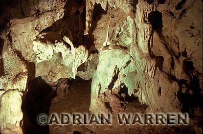 Vampire Bat Cave (Desmodus rotundus), Trinidad