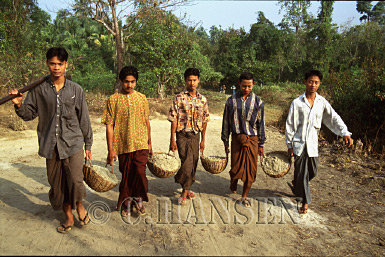 Team Work (carrying sand for making temple), Nagpali, Myanmar (formerly Burma)