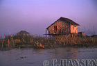 Thatch rural house, Inle Lake, Myanmar (formerly Burma)