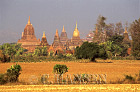 Temples, Bagan, Myanmar (formerly Burma)
