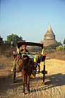 Horse and Cart with a Temple in background, Bagan, Myanmar (formerly Burma)