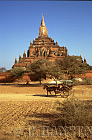 Horse and Cart, Sulamani Pahto, Bagan, Myanmar (formerly Burma)
